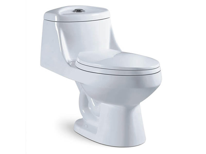Economical one piece bathroom siphonic toilet