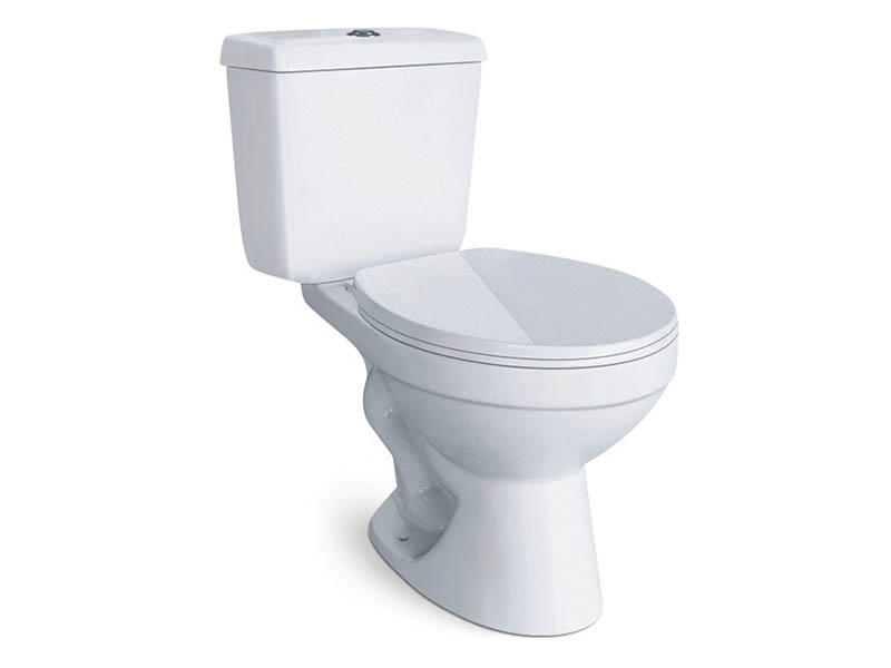 Made in china sanitary ware 2-piece dual flush siphonic toilet