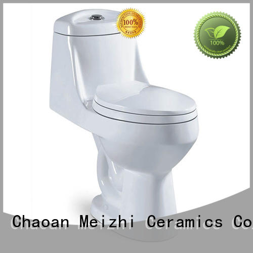 colored one piece toilet reviews customized for home