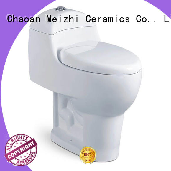 siphonic modern one piece toilet customized for home