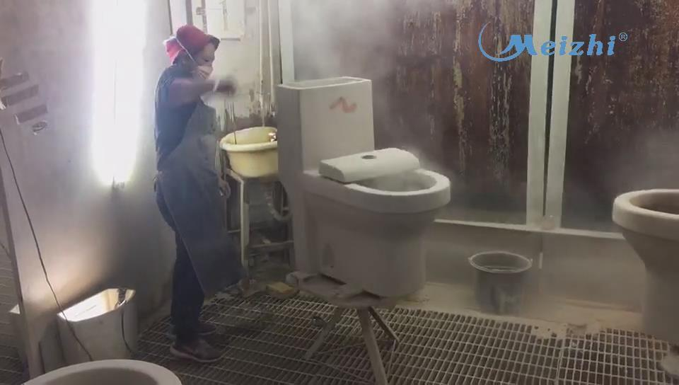 Sanitary ware toilet body cleaning