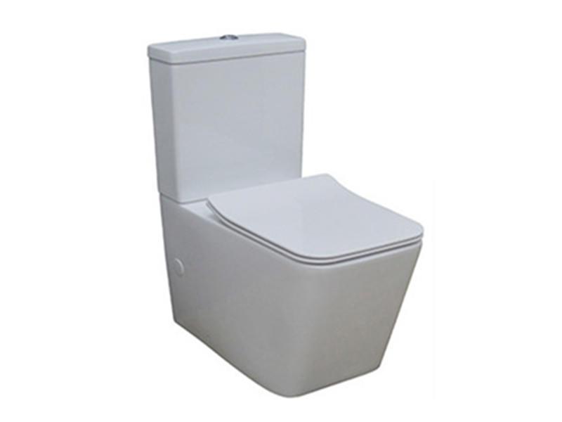 Washdown p-trap wc western toilet standard size