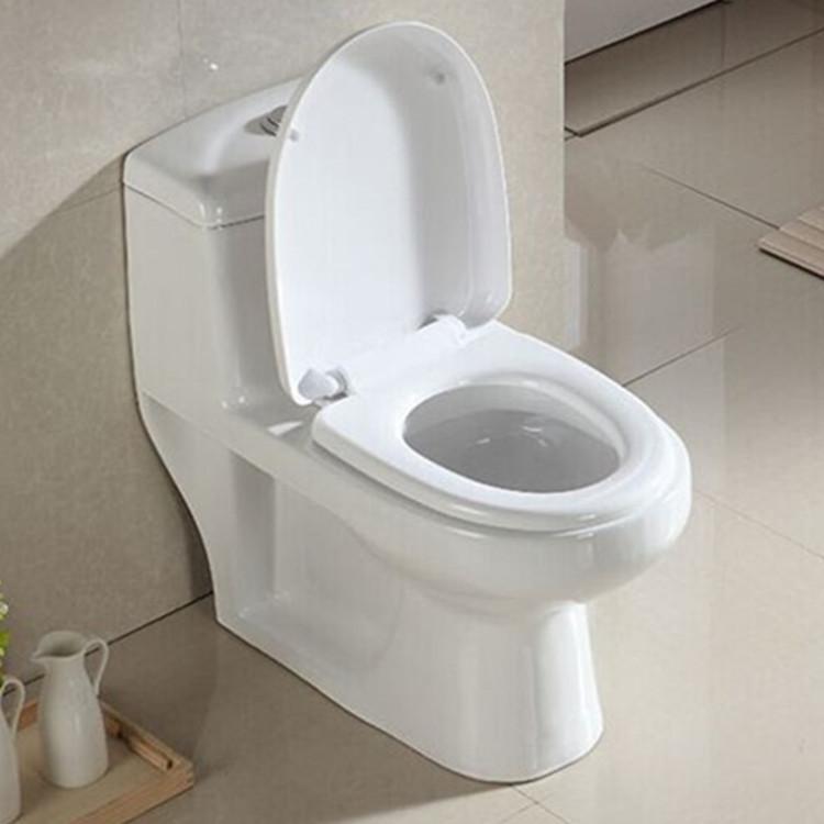 Meizhi wc toilet manufacturer for washroom-1