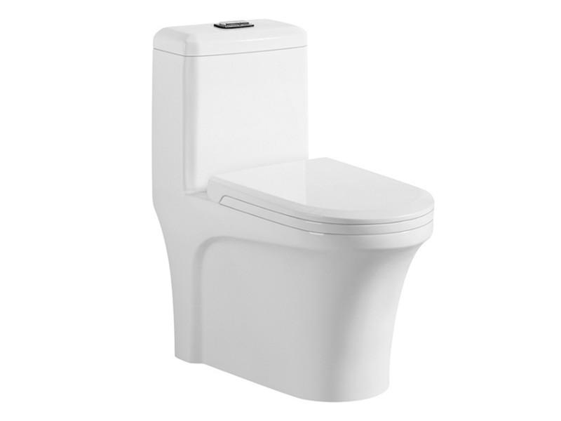 Western Custom Porcelain Shape Marine Type Of Toilet Bowl
