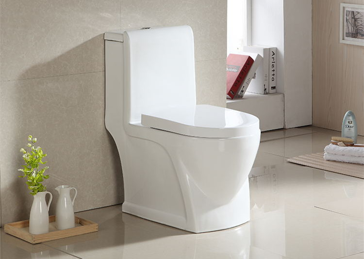new design contemporary toilet supplier for washroom-1