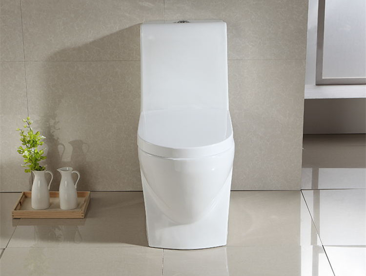 new design contemporary toilet supplier for washroom-2