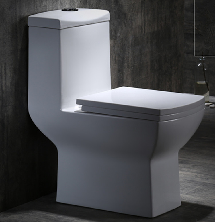 Meizhi modern toilet supplier for home-1