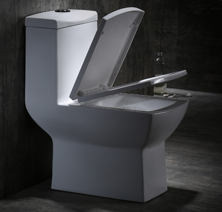 Meizhi modern toilet supplier for home-2