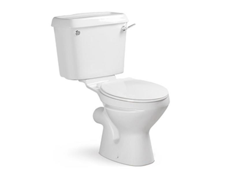 Twyford two piece washdown toilet for Africa