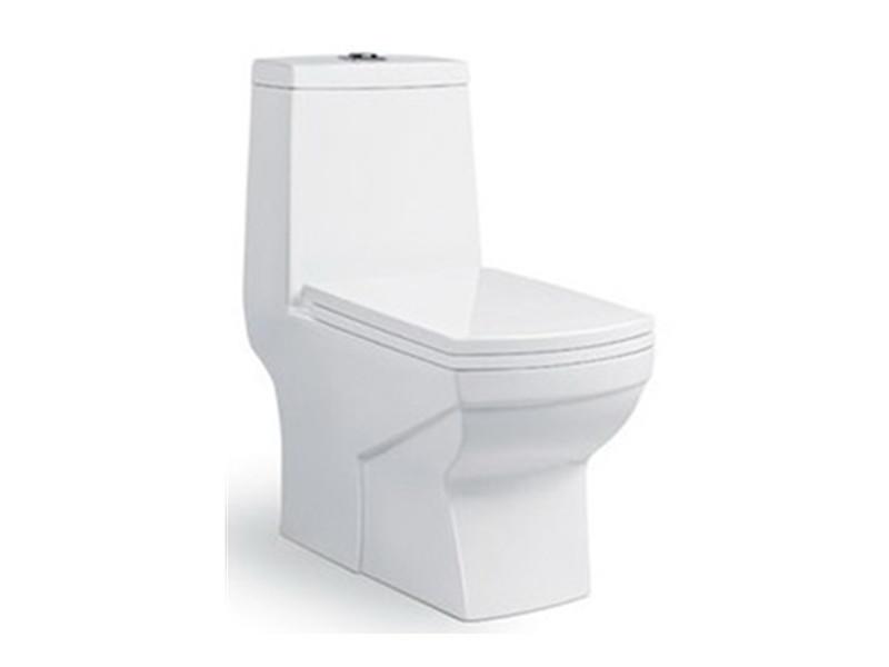 Square ceramic washdown one piece toilet