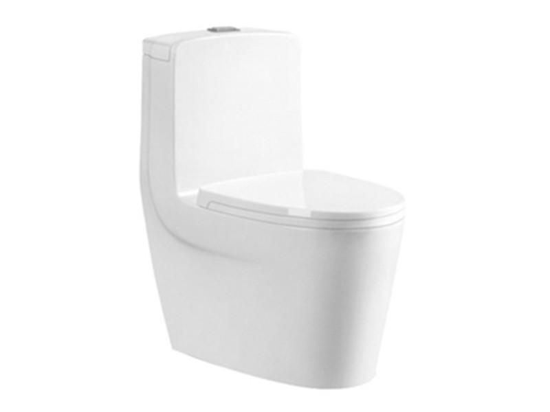 Siphonic toilet china sanitary ware the top 10 brands