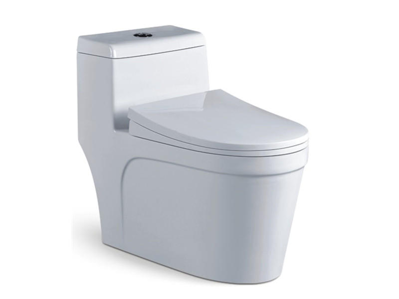One piece sanitary ware coloured bathroom toilet commode