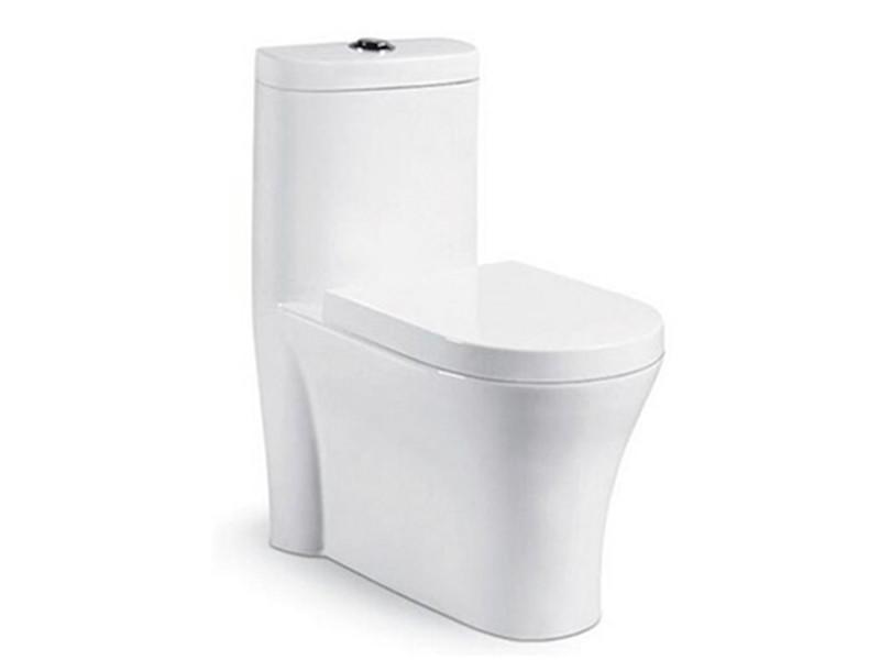 China Inexpensive Dual-Flush Bathroom Siphonic Flushing Modern Toilet Seat