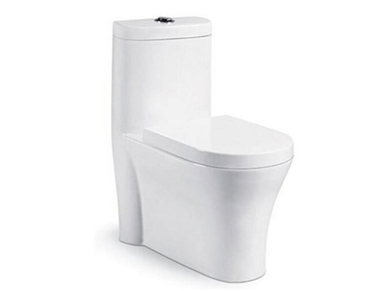 China Inexpensive Dual-Flush Bathroom Siphonic Flushing Modern Toilet Seat