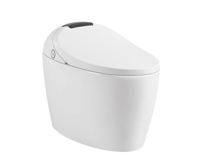 Smart toilet bidet with intelligent control