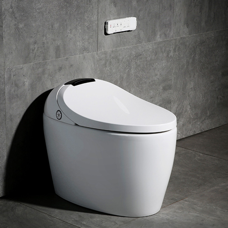 Meizhi intelligent toilet directly sale for home-1