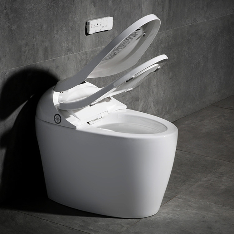 Meizhi intelligent toilet directly sale for home-2