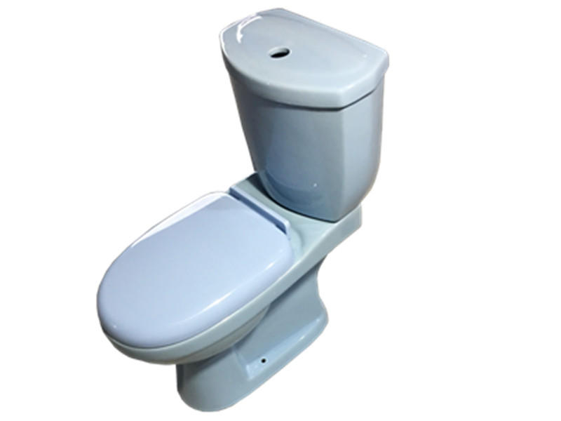 High quality economic washdown blue color toilet for sale