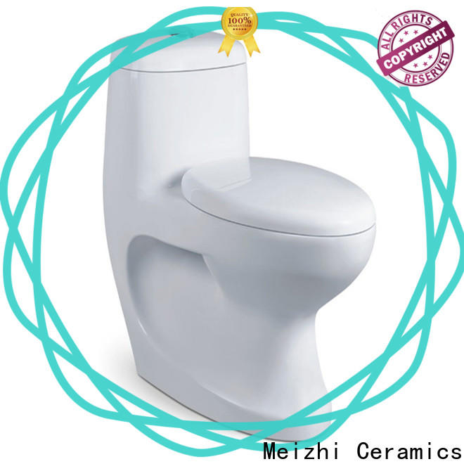 modern 1 piece toilet with good price for bathroom