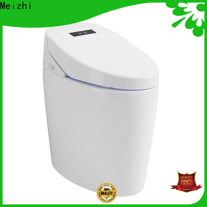 Meizhi remote control intelligent toilet factory price for bathroom