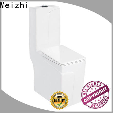 self-cleaning one piece comfort height toilet customized for bathroom