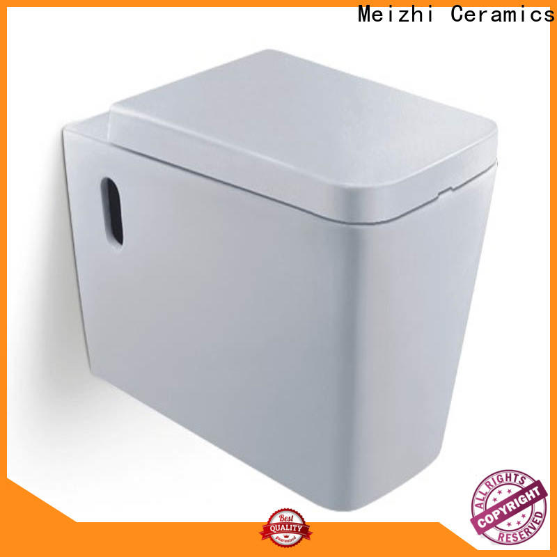 Meizhi suspended toilet wholesale for home
