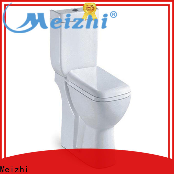professional eco flush toilet customized for bathroom