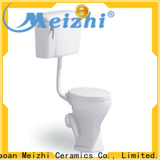 modern eco flush toilet customized for washroom