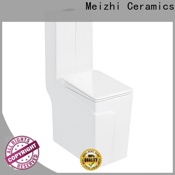 Meizhi european toilet supplier for home