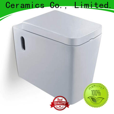 self-cleaning american standard wall hung toilet factory for hotel