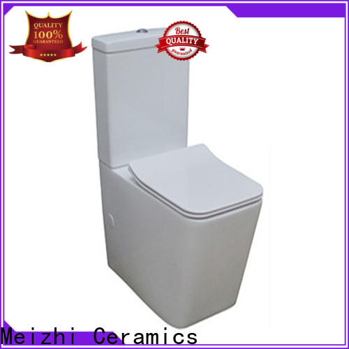 Meizhi modern eco flush toilet directly sale for home