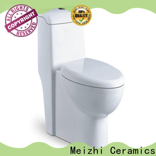 Meizhi one piece elongated toilet manufacturer for washroom