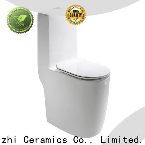 Meizhi one piece toilet reviews customized for home