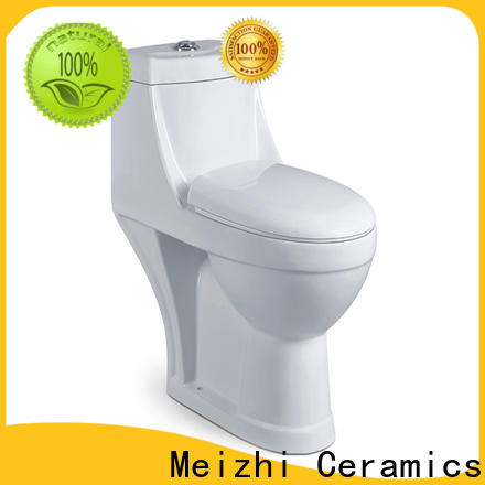 Meizhi colored one piece comfort height toilet customized for washroom