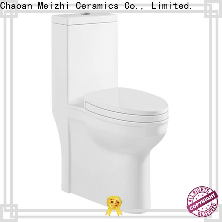 siphonic one piece elongated toilet directly sale for home