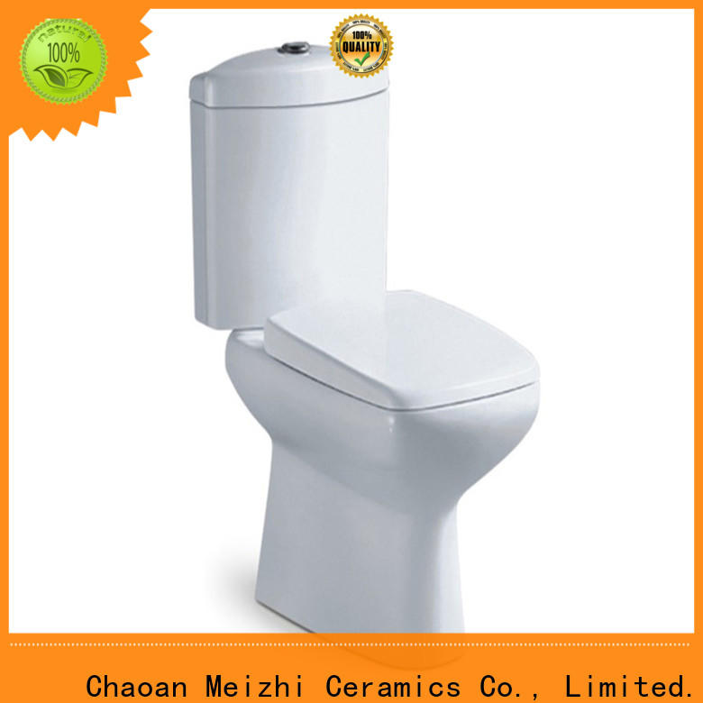 modern 2 piece toilet customized for home