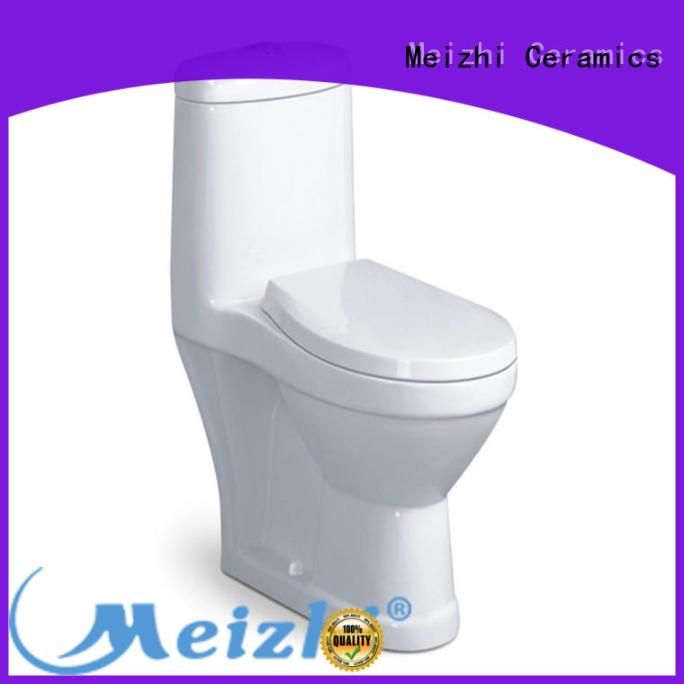 Meizhi all in one toilet manufacturer for home