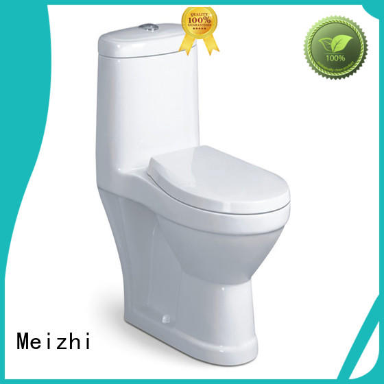 self-cleaning best one piece toilet customized for washroom