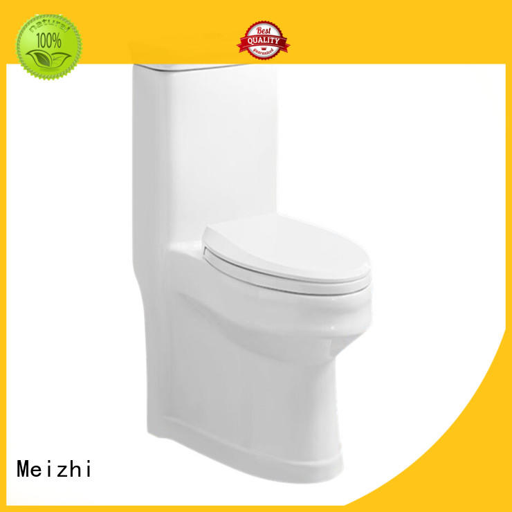 modern 1 piece toilet customized for hotel