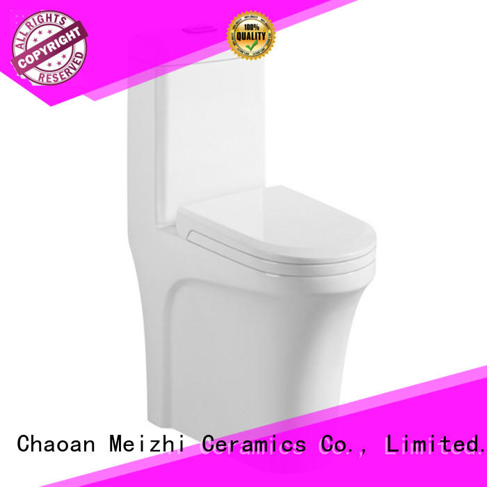 siphonic all in one toilet customized for bathroom