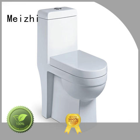 modern one piece toilet seat customized for home