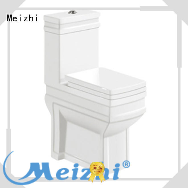 Meizhi siphonic all in one toilet with good price for home