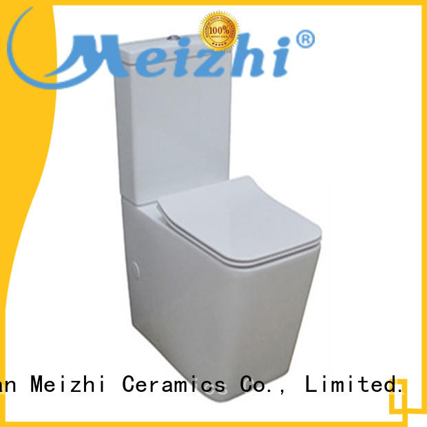 Meizhi 2 piece toilet manufacturer for washroom