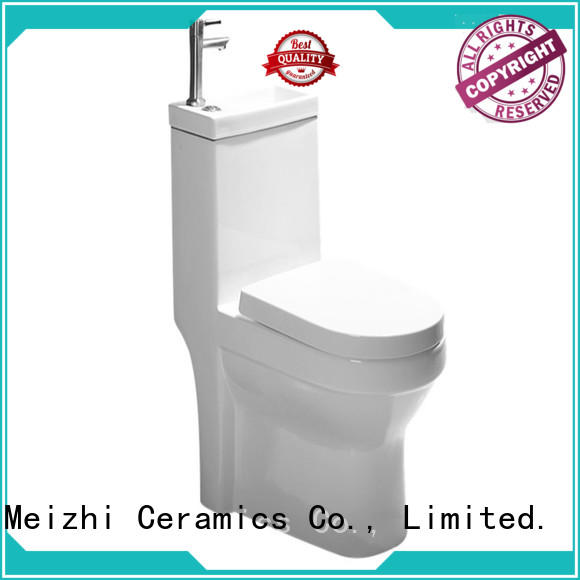 siphonic one piece toilet customized for home